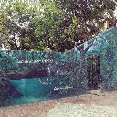 beautiful dive mural