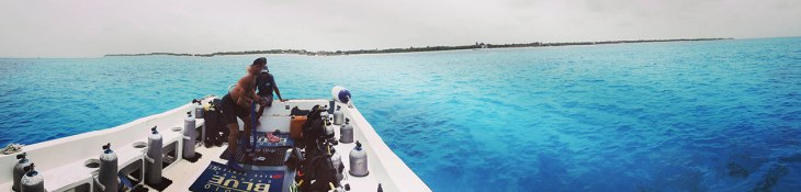 cozumel... diving in paradise!