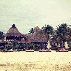 beach bar...